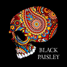 blackpaisleynew_jan_2017_1003007.jpg